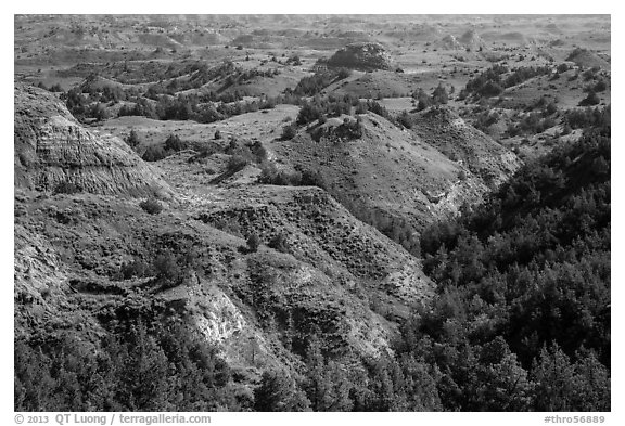 Vegetation-covered buttes. Theodore Roosevelt National Park (black and white)
