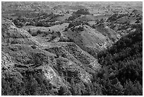 Vegetation-covered buttes. Theodore Roosevelt National Park, North Dakota, USA. (black and white)
