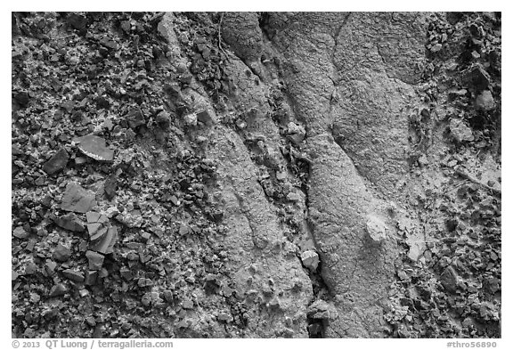 Close-up of clinker and clay. Theodore Roosevelt National Park (black and white)