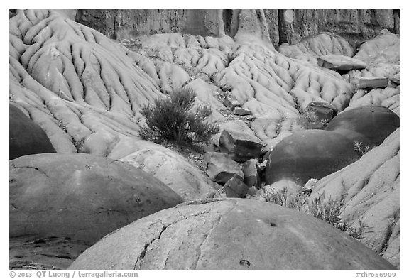 Cannonball concretions on badland folds. Theodore Roosevelt National Park (black and white)