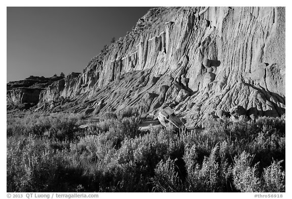 Grasses and cliff with cannonball concretions. Theodore Roosevelt National Park (black and white)