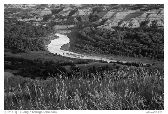 Grasses, Little Missouri river bend and badlands. Theodore Roosevelt National Park (black and white)