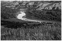 Grasses, Little Missouri river bend and badlands. Theodore Roosevelt National Park ( black and white)