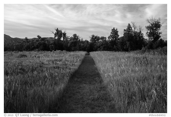 Trail through grasses, Elkhorn Ranch Unit. Theodore Roosevelt National Park (black and white)
