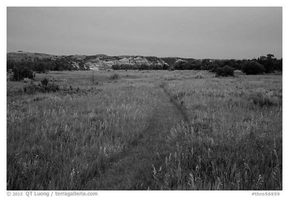 Faint trail at dusk, Elkhorn Ranch Unit. Theodore Roosevelt National Park (black and white)