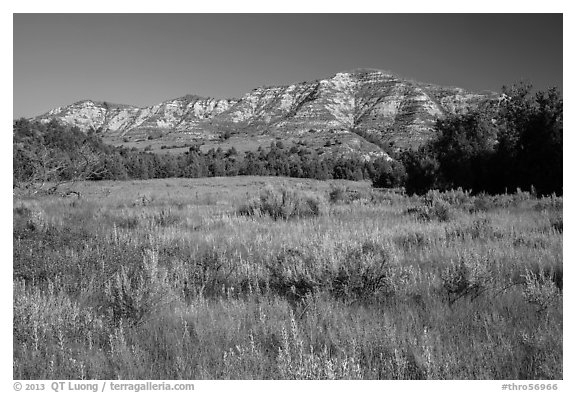 View from Roosevelt Elkhorn Ranch site. Theodore Roosevelt National Park (black and white)