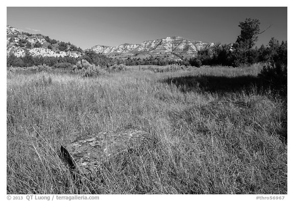 Roosevelt Elkhorn Ranch site with foundation stone. Theodore Roosevelt National Park (black and white)