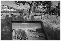 Interpretive sign, Roosevelt Elkhorn Ranch site. Theodore Roosevelt National Park ( black and white)