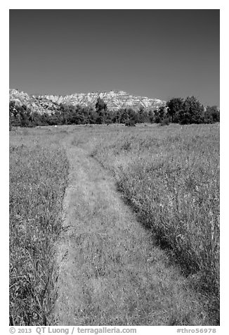 Grassy faint trail and badlands, Elkhorn Ranch Unit. Theodore Roosevelt National Park (black and white)