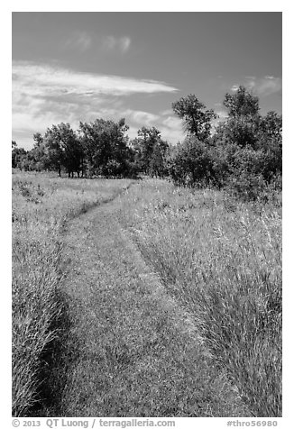 Soft grass-covered trail, Elkhorn Ranch Unit. Theodore Roosevelt National Park (black and white)