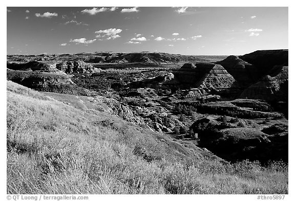 Forested Badlands. Theodore Roosevelt National Park (black and white)