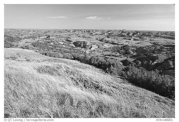 Prairie and badlands from Buck Hill, early morning. Theodore Roosevelt National Park, North Dakota, USA.