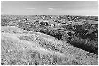 Prairie and badlands from Buck Hill, early morning. Theodore Roosevelt National Park ( black and white)