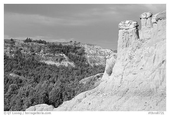 Caprock chimneys, Caprock coulee trail, North Unit. Theodore Roosevelt National Park (black and white)