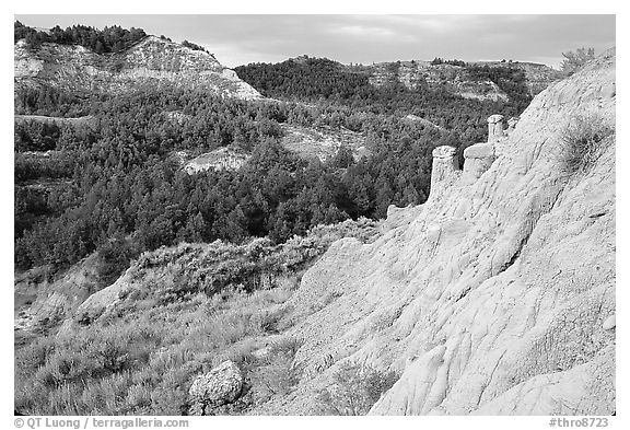 Rain Pillars, Caprock coulee trail, North Unit. Theodore Roosevelt National Park (black and white)