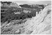 Rain Pillars, Caprock coulee trail, North Unit. Theodore Roosevelt National Park, North Dakota, USA. (black and white)
