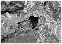 Cave mouth, where strong winds equalize pressure between inside outside. Wind Cave National Park ( black and white)