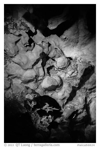 Cave ceiling. Wind Cave National Park (black and white)