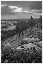 Rankin Ridge and cumulonimbus cloud in late afternoon. Wind Cave National Park, South Dakota, USA. (black and white)