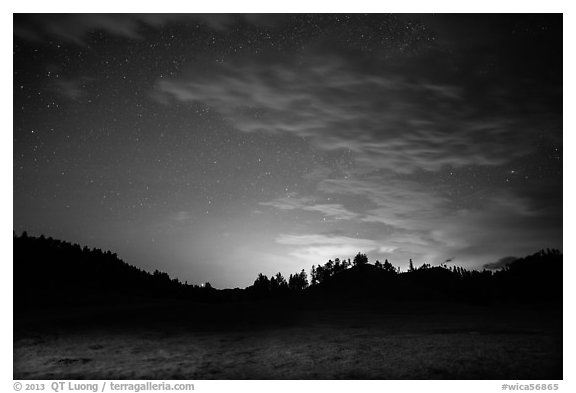 Prairie, pine trees on rolling hills at night. Wind Cave National Park (black and white)