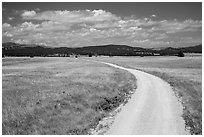 Gravel road through Red Valley. Wind Cave National Park, South Dakota, USA. (black and white)