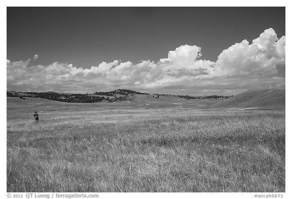 Park visitor looking, prairie and rolling hills. Wind Cave National Park (black and white)
