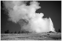 Steam clouds drifting from Old Faithfull geyser. Yellowstone National Park, Wyoming, USA. (black and white)