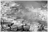 Minerva travertine terraces at Mammoth Hot Springs. Yellowstone National Park, Wyoming, USA. (black and white)