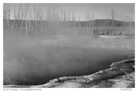 Pools, West Thumb geyser basin. Yellowstone National Park (black and white)