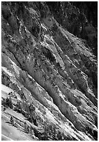 Canyon slopes, Grand Canyon of Yellowstone. Yellowstone National Park ( black and white)