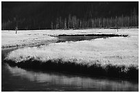 Yellowstone River and meadow in fall. Yellowstone National Park, Wyoming, USA. (black and white)