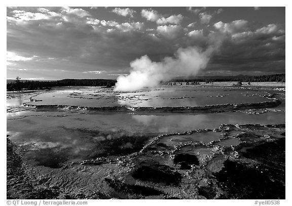 Great Fountain geyser. Yellowstone National Park (black and white)