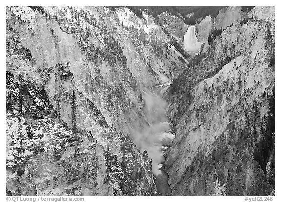 Grand Canyon of Yellowstone and Lower Falls with snow dusting. Yellowstone National Park (black and white)