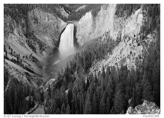 Canyon and Lower Falls of the Yellowstone river. Yellowstone National Park (black and white)