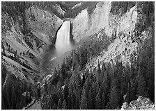 Canyon and Lower Falls of the Yellowstone river. Yellowstone National Park, Wyoming, USA. (black and white)