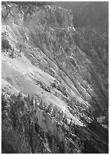 Slopes of Grand Canyon of the Yellowstone. Yellowstone National Park, Wyoming, USA. (black and white)
