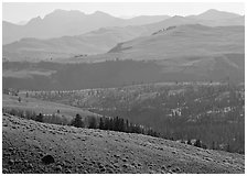 Absaroka Range from Dunraven Pass, early morning. Yellowstone National Park ( black and white)