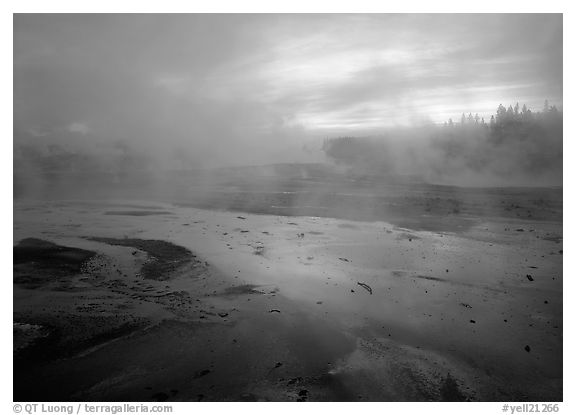 Steam in Norris Geyser Basin at dawn. Yellowstone National Park (black and white)