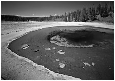 Beauty Pool. Yellowstone National Park ( black and white)