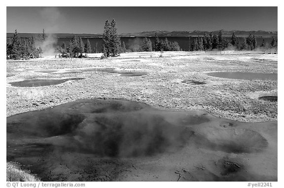West Thumb Geyser Basin. Yellowstone National Park (black and white)