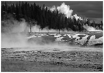Fumeroles and forest in Upper Geyser Basin. Yellowstone National Park, Wyoming, USA. (black and white)