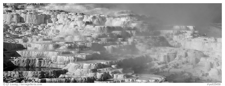 Thermal travertine terraces. Yellowstone National Park (black and white)