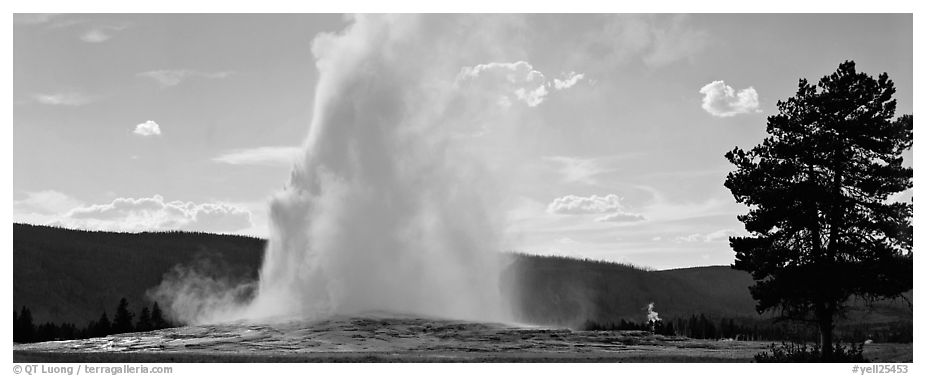 Old Faithful geyser. Yellowstone National Park (black and white)