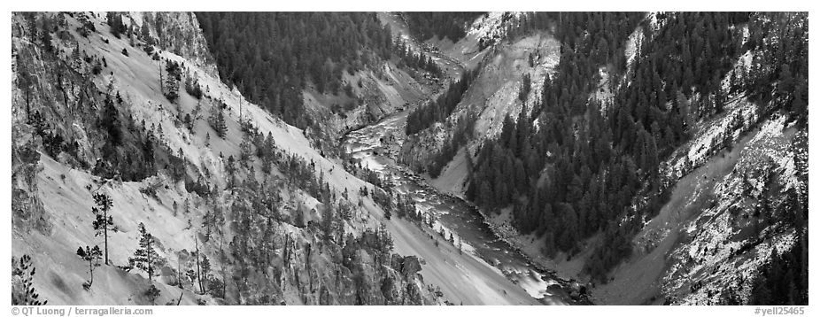 Yellowstone River meandering through canyon. Yellowstone National Park (black and white)