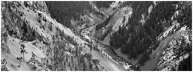 Yellowstone River meandering through canyon. Yellowstone National Park (Panoramic black and white)