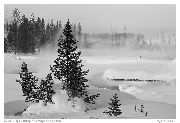 Snow-covered West Thumb thermal basin. Yellowstone National Park (black and white)