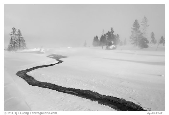 Thermal run-off and snowy landscape. Yellowstone National Park (black and white)