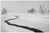 Thermal run-off and snowy landscape. Yellowstone National Park, Wyoming, USA. (black and white)