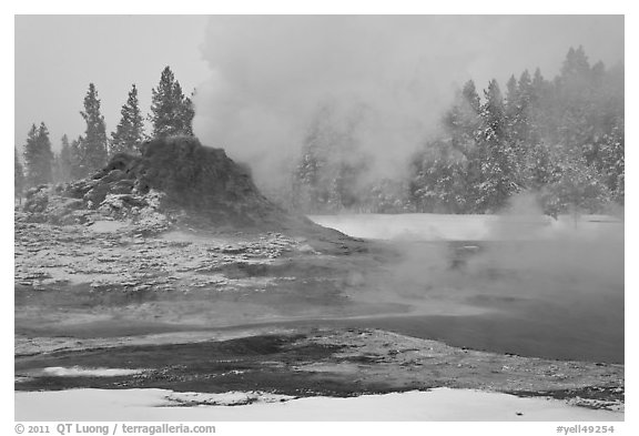 Castle geyser cone and steam in winter. Yellowstone National Park (black and white)