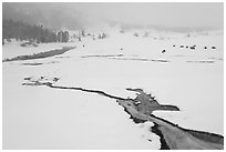 Winter landscape with thermal run-off. Yellowstone National Park, Wyoming, USA. (black and white)